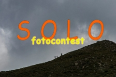 SOLOfotocontest